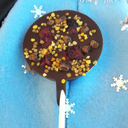 Medus ar āboliem un kanēli tumšajā šokolādē