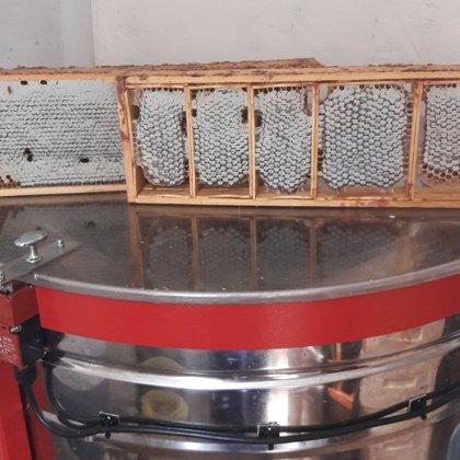 Cellular honey